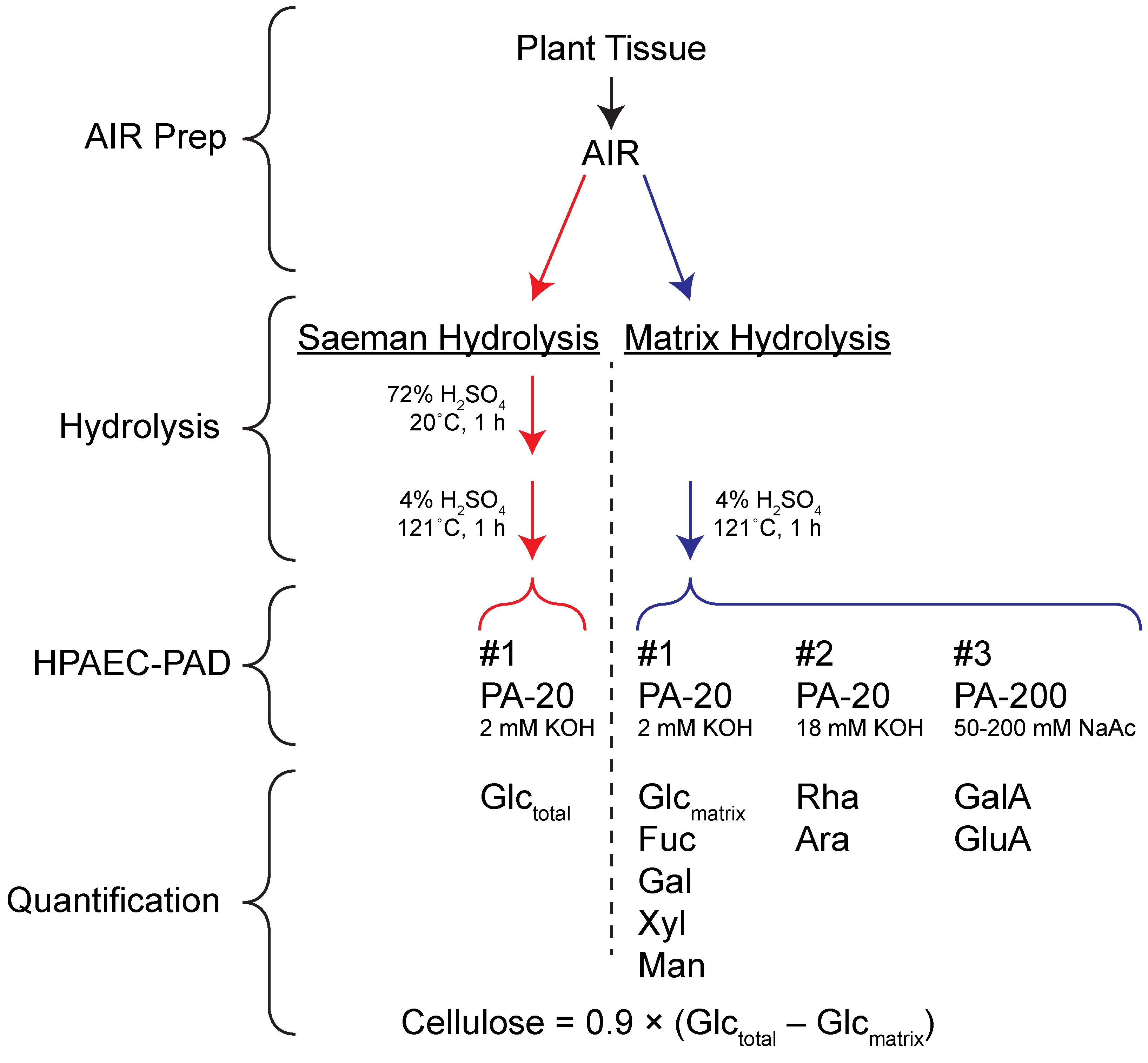 Rapid Determination of Cellulose, Neutral Sugars, and