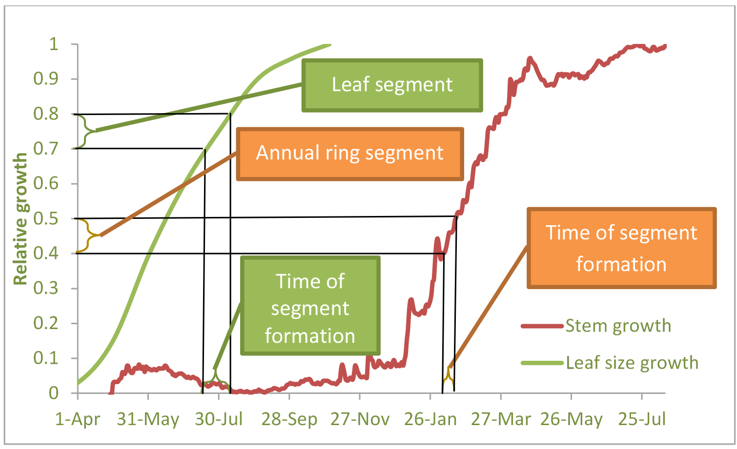 Forest gpp calculation using sap flow and water use efficiency scheme of high resolution ring width development and leafneedle elongation with time and the sample slices dating example from yatir semi arid pine ccuart Gallery