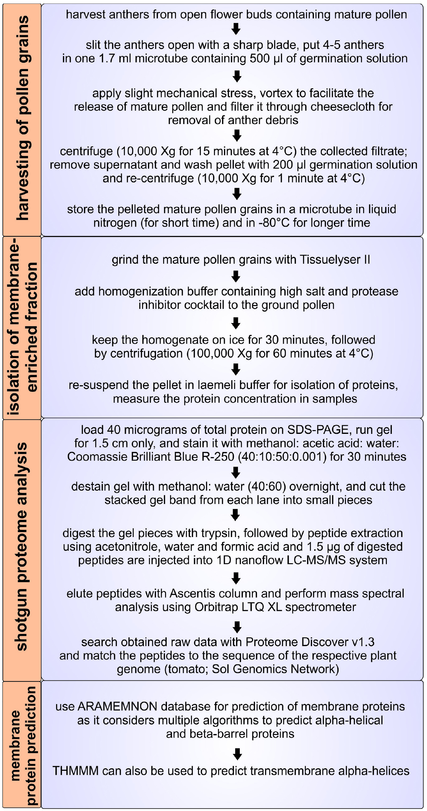 Figure 1 Overview Of The Protocol For Isolation Membrane Proteome Mature Tomato Pollen