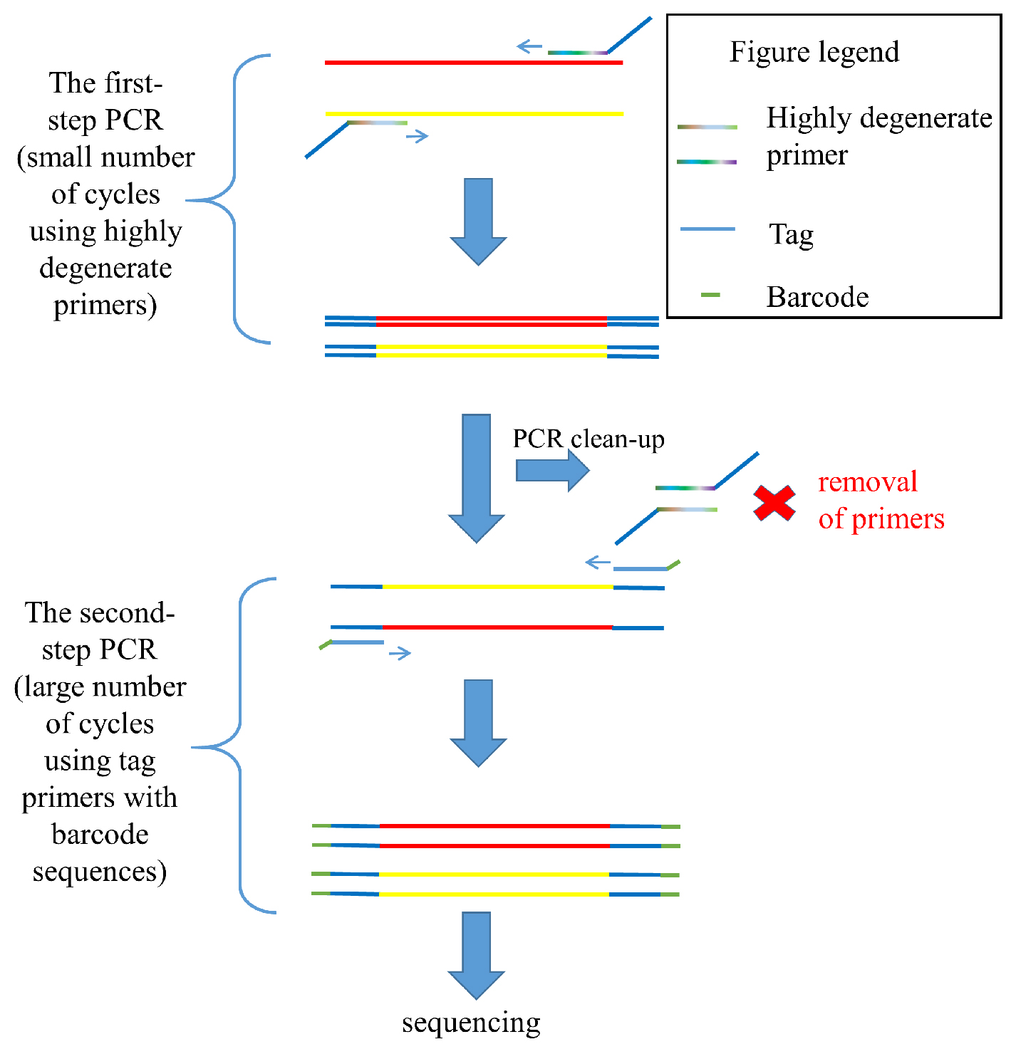 Tagged Highly Degenerate Primer (THDP)-PCR for Community