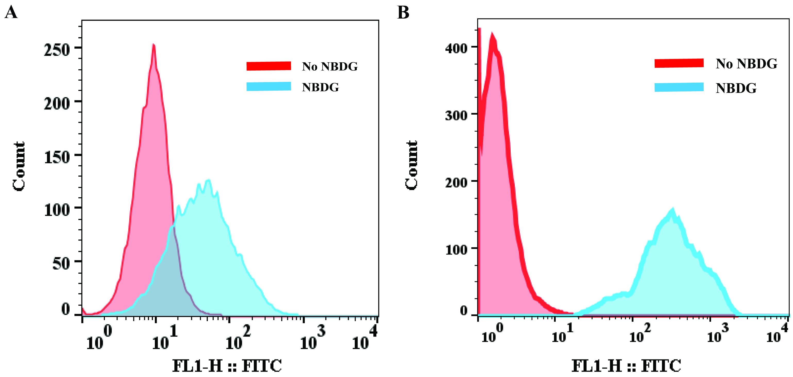 FACS-based Glucose Uptake Assay of Mouse Embryonic