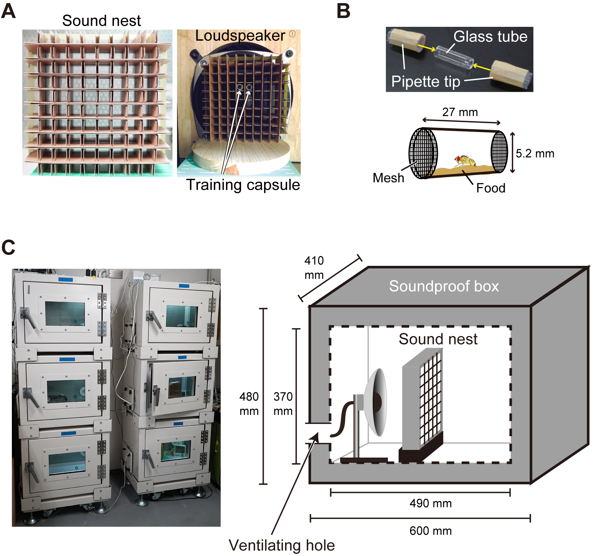 Assessing Experience Dependent Tuning Of Song Preference In Diagram D Audio For 410 Rooms Using A Second Stereo Receiver Two Pipette Tips Sealed With Stocking Mesh Cover Both Open Ends Glass Tube Upper Schematic