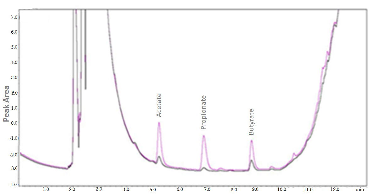 Use of Gas Chromatography to Quantify Short Chain Fatty