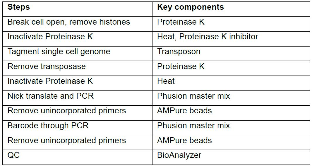 Preparing Single Cell Dna Library Using Nextera For