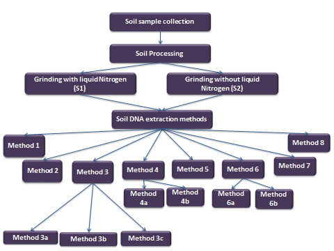 Different Methods Of Soil Dna Extraction Bio Protocol