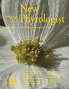 New Phytologist