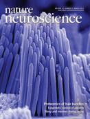 Nature Neuroscience