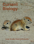 Current Biology
