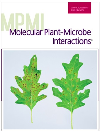 Molecular Plant Microbe Interactions