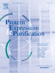 Protein Expression and Purification