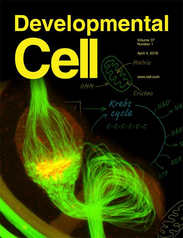 Developmental Cell