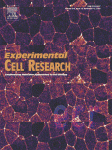 Experimental Cell Research