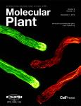 Molecular Plant