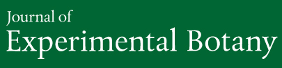 Journal of Experimental Botany