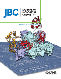 The Journal of Biological Chemistry