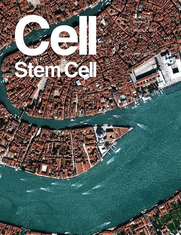 Cell Stem Cell