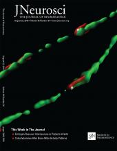 The Journal of Neuroscience