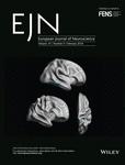 European Journal of Neuroscience