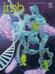 Journal of Molecular Biology