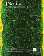 The Journal of Neuroscience