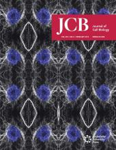 The Journal of Cell Biology