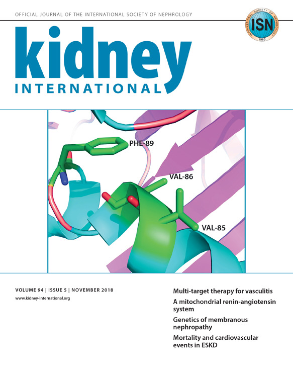 Kidney International  Journals